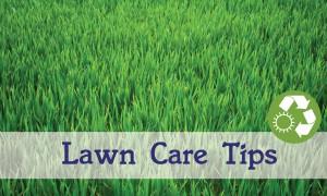 garden tips5